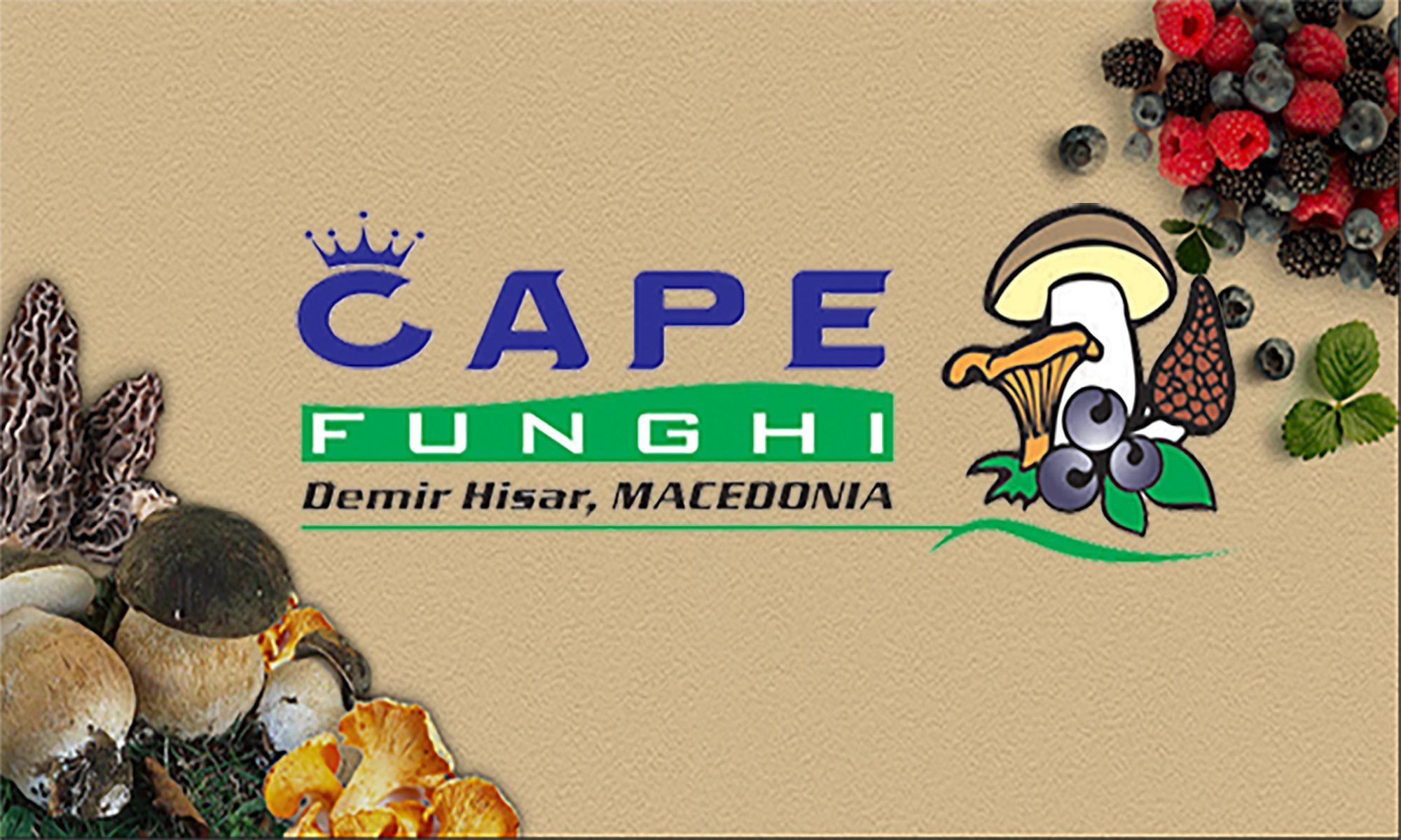 CHAPE FUNGHI